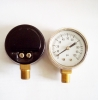 Naite Bottom Entry Pressure gauge