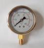 Naite Bottom liquid filled pressure gauge