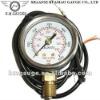 Waterproof type cng gas pressure gauge